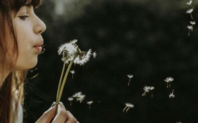 Help for hay fever